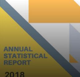 annual statistics image
