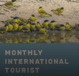 monthly statistics image