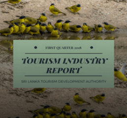 tourism statistics image